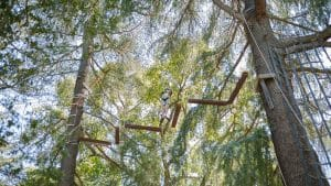 Camper doing a high ropes obstacle